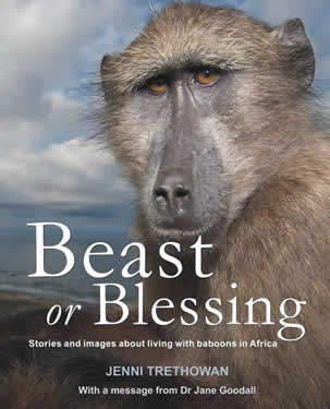 beast-or-blessing